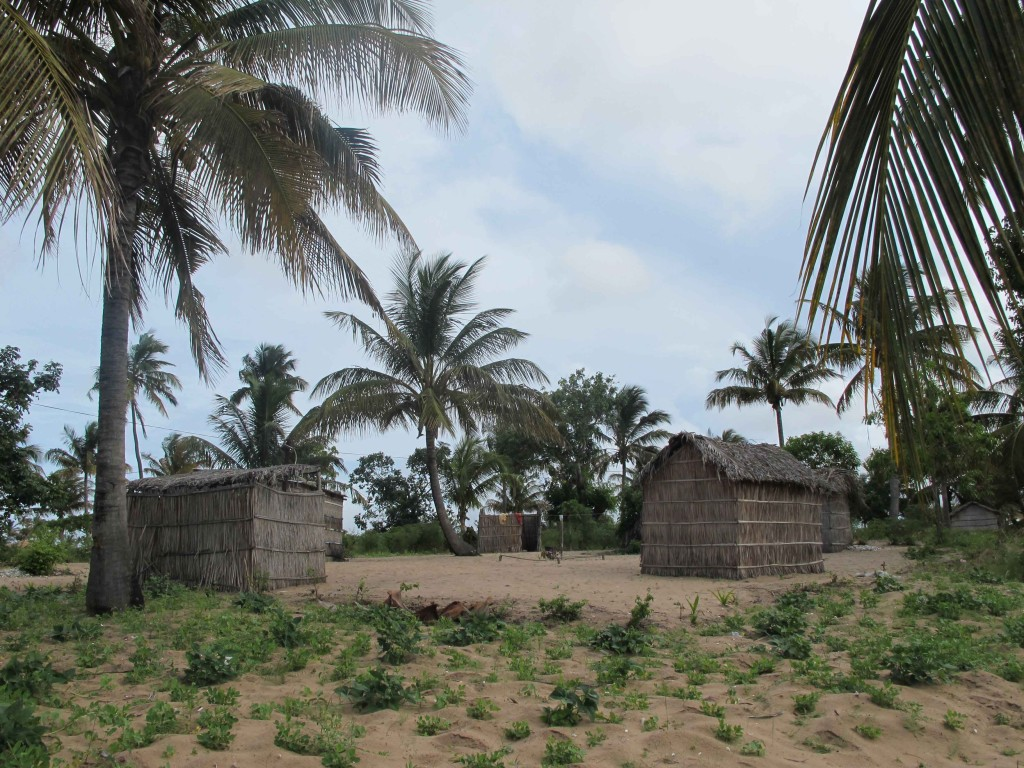 Traditional Mozambican family housing with huts arranged in a circle around a communal central area