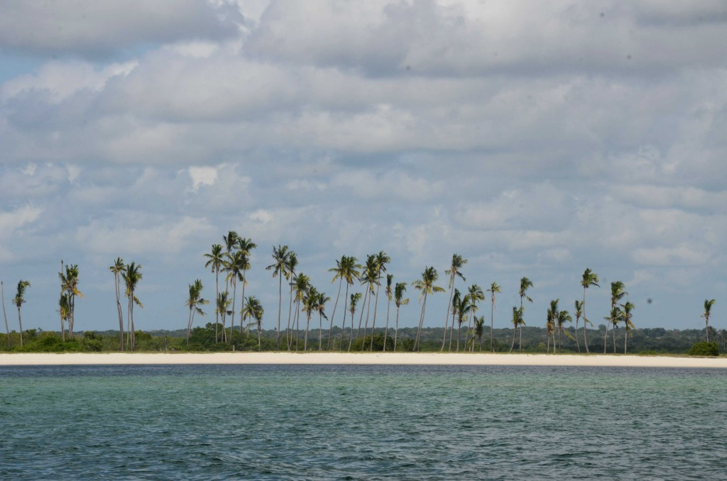 The pristine coastline of Palma in northern Mozambique.