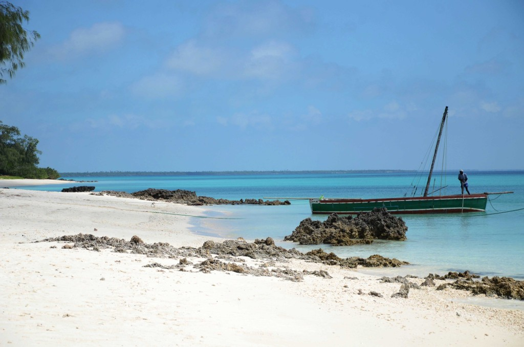 The white sandy beaches and turquoise waters of Vamizi Island