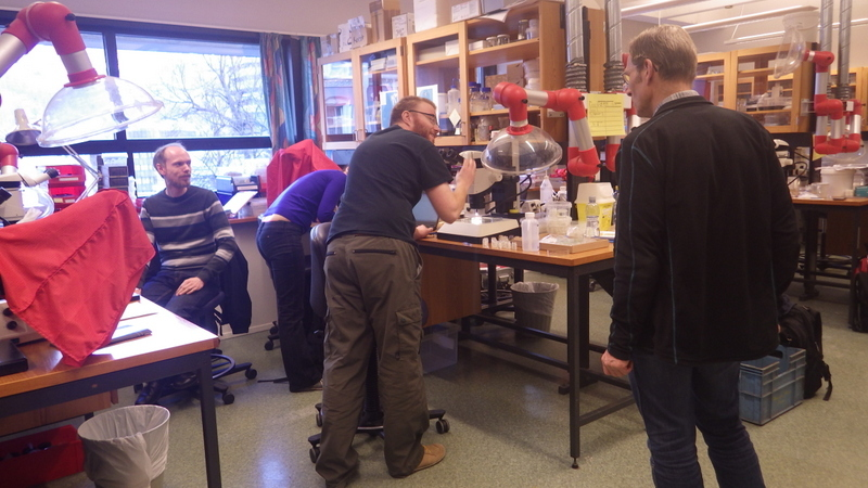 Snaphshot from one of the workshops during the porject Polychaete diversity in Norwegian Waters (PolyNor)
