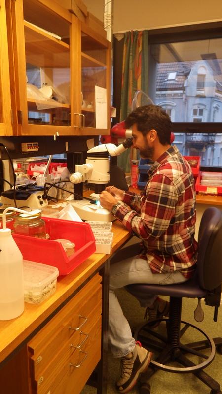 Mario in the Lab
