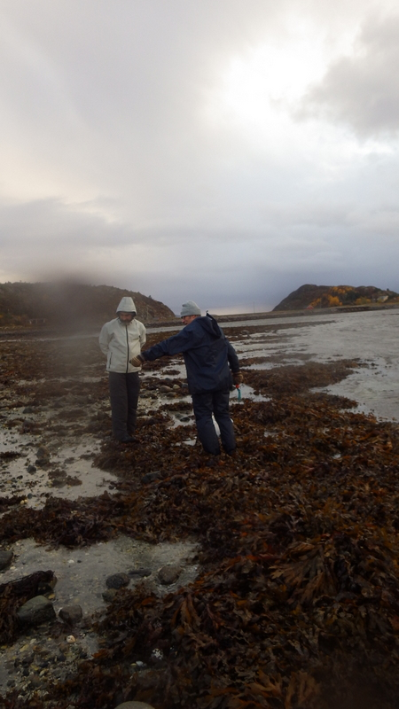 Field work - somewhat cold and windy