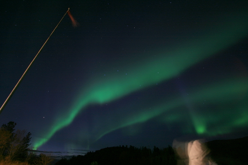Aurora borealis and a hooded tropical visitor. Photo: K.Kongshavn