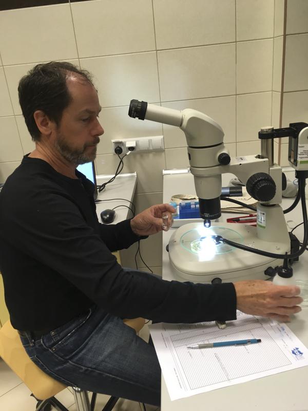 Ed at work with a nice sample. Photo: AH Tandberg