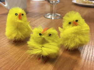The coolest easter-chickens in Spala. Photo: AH Tandberg