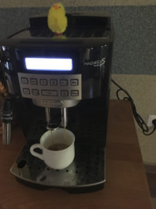 Easter-prepared coffee! Photo: AH Tandberg