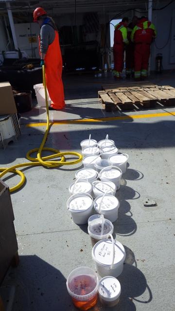 Many, many buckets