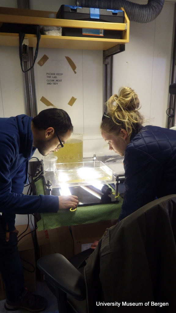Luis an Marie studying a plankton sample