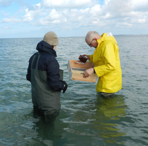 Prof Wolfgang Wranik (yellow coat) sampling in 2015