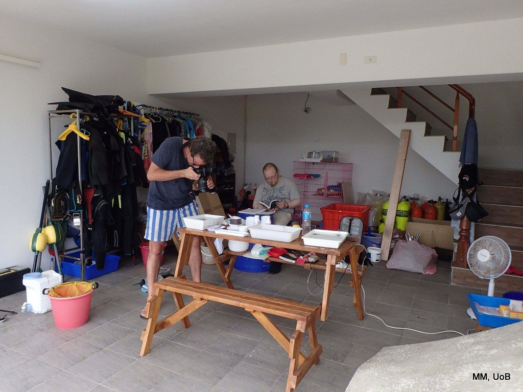 The garage of our hostel in Penghu, transformed into a wet lab for a week