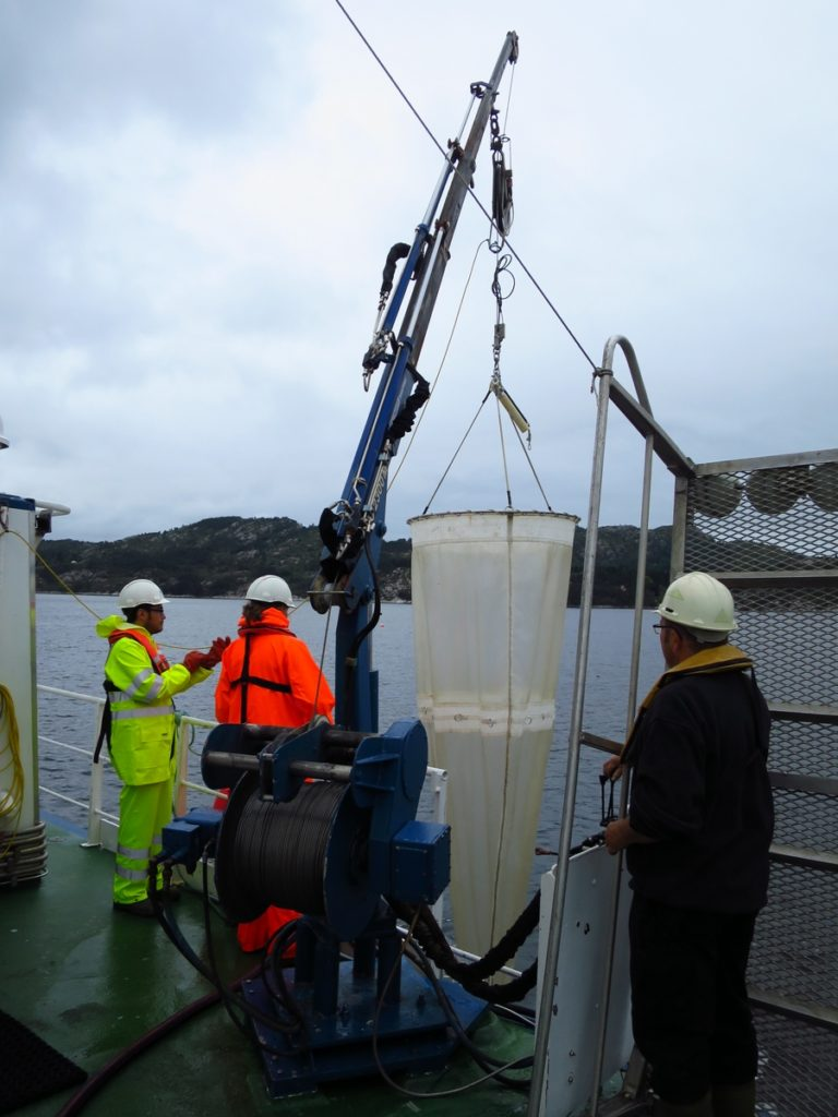 "Deploying the net with help of the crew from RV ""Hans Brattstrøm"""